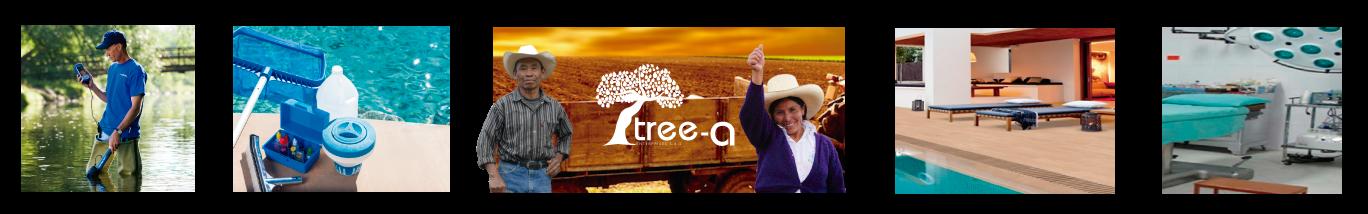 tree-a-imagenes
