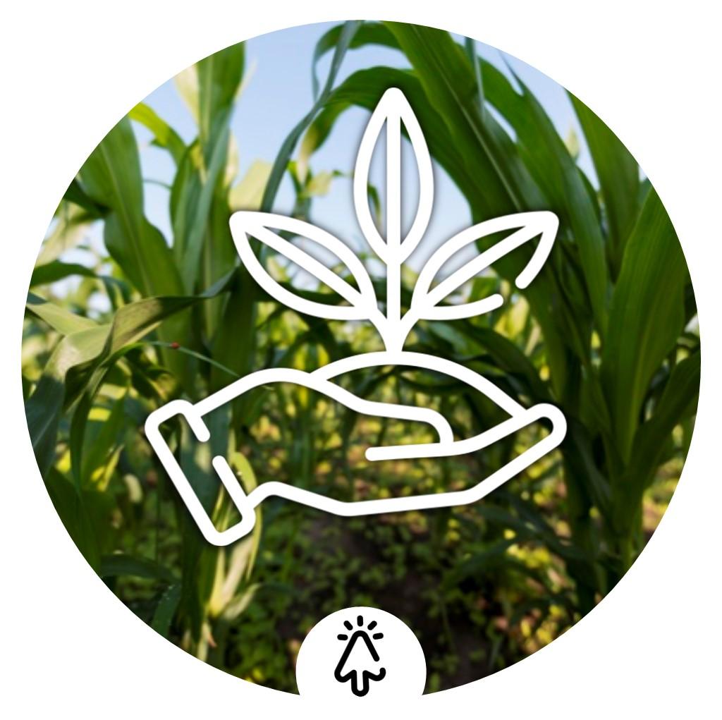 icono de Agriculture & Cattle linea de Tree-a enterprises sas